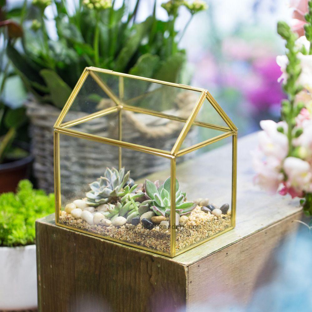 Cuivre maison forme mousse fougère verre boîte Pots de fleurs Wardian Case victorien Vintage jardinières succulentes géométrique Terrarium Vase