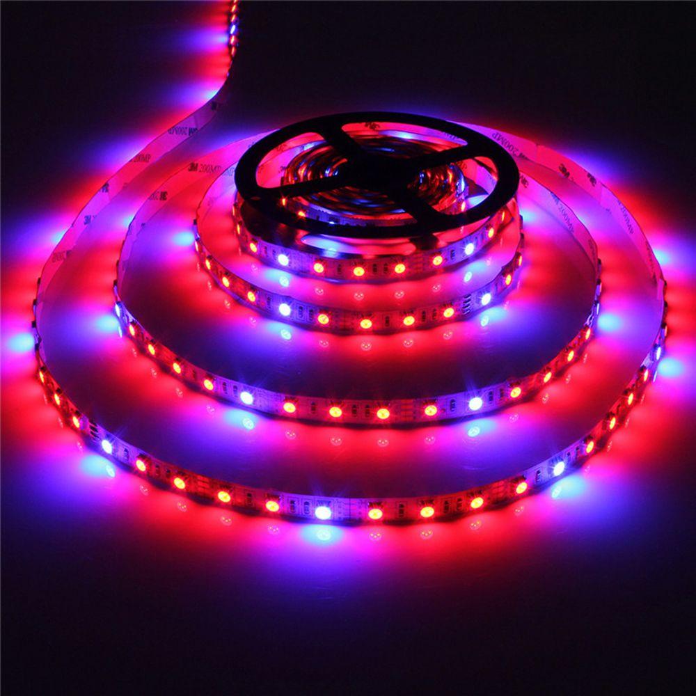 LED plante pousser des lumières 5050 LED bande 5 m/lot 60 LED s/m DC12V rouge bleu 3:1, 4:1, 5:1, pour la culture de plantes hydroponiques à effet de serre
