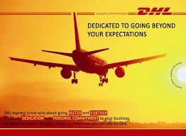 4-7 Business days DHL Shipping Carrier