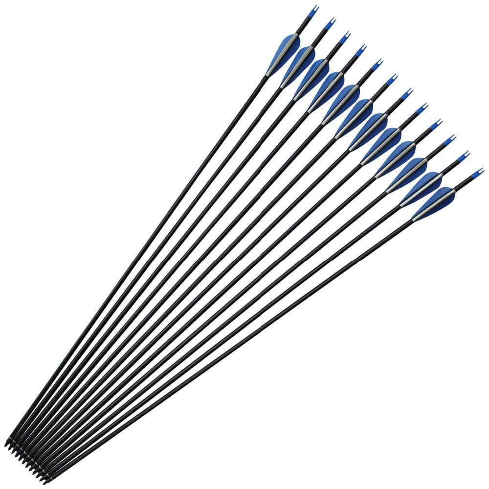 32 Inches 7.6mm Spine 400 Dart Carbon Archery Arrows for Recurve Compound Bow Tip Hunting Shooting Replaceable Arrowhead Darts