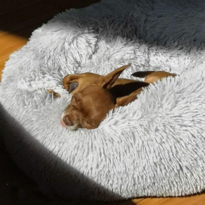 Macaron lit rond pour chien Photograp lavable chat petits beignets maison pour chien Super doux coton tapis canapé pour chien Chihuahua panier pour chien