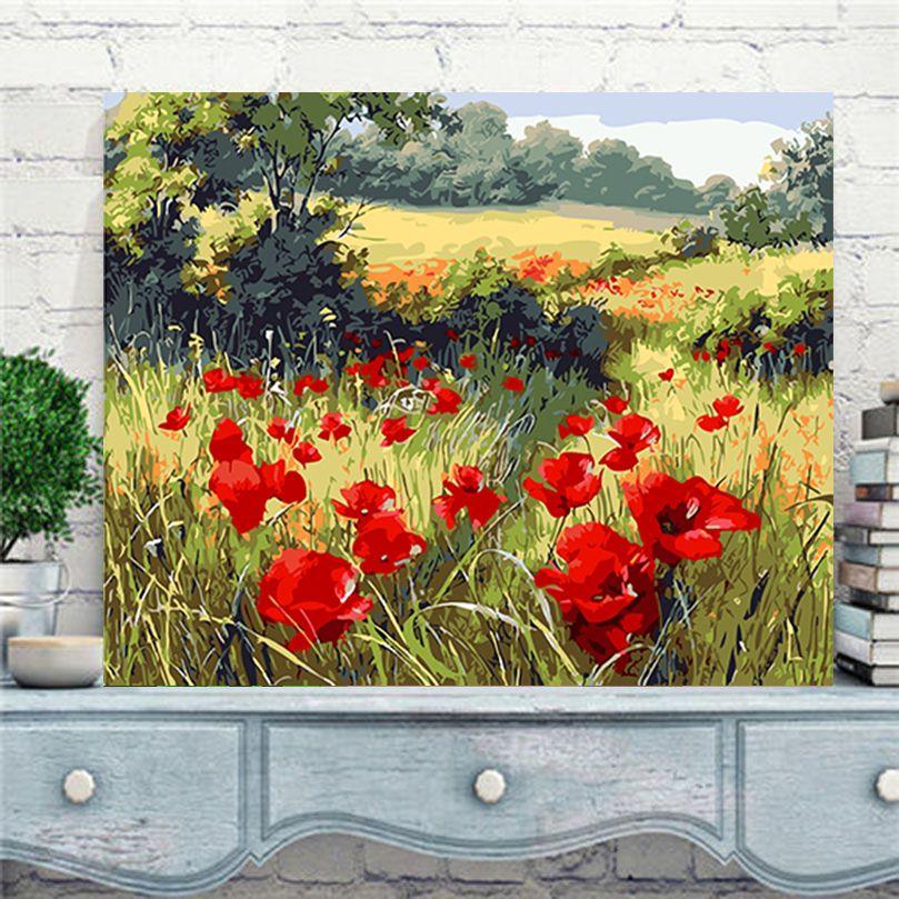 Sauvage rouge de fleur de pavot photos par numéros nouveau design toile peinture à l'huile par numéros de mode photos sur le mur art AL009