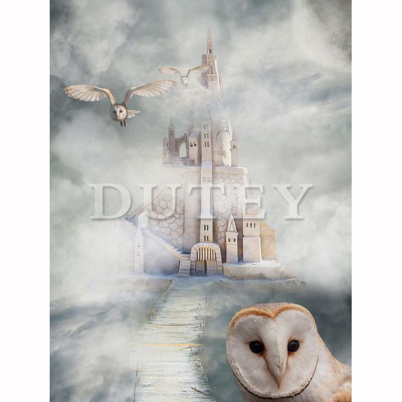 5D DIY Diamond Embroidery Diamond Painting Full Square/Round Drill Castle & Owl 3D Rhinestone Home Decor HYY