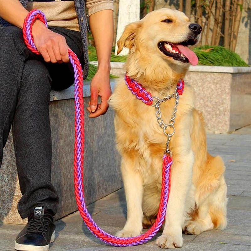 1 set grand animal de compagnie dédié chien laisse et collier brins tressés corde chiens colliers laisses chaîne forte pour grands chiens animaux
