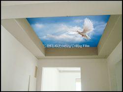 SKB-003Eagle летать в голубое небо растягивающаяся пленка с изображением нового звездного неба для отделки Стел с эффектом в гостиной