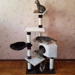 Caliente! Escalada gato muebles casa rascador gatito que juega con la bola entrenamiento del gato producto marco con PET cama #0232