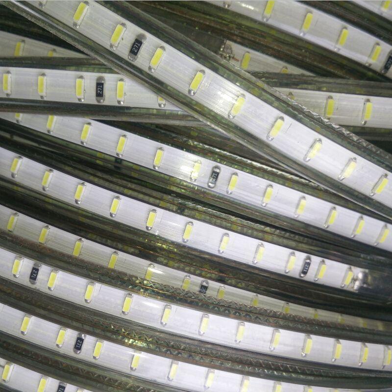 1M/2M/3M/4M/5M/6M/7M/8M/9M/10M/15M+Power Plug,120leds/m SMD3014 AC 220V led strip flexible light Cold white Waterproof led light