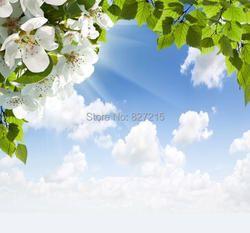 T-2786 деревья и голубое небо ПВХ стрейч потолок пленка для украшения дома строительный материал