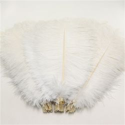 10 pcs/lot 10-12 pouces doux moelleux plumes d'autruche pur blanc plume d'autruche pour l'artisanat plumes de mariage partie décoration 25-30 cm
