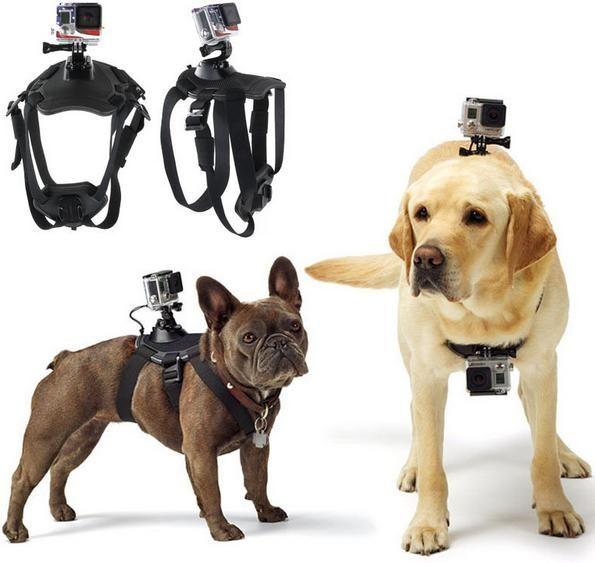 For GoPro Accessories Adjustable Dog Fetch Harness Chest Strap Belt Mount For GoPro Hero 5/4/3+/3/2/SJ4000/ SJ5000 Action Sport