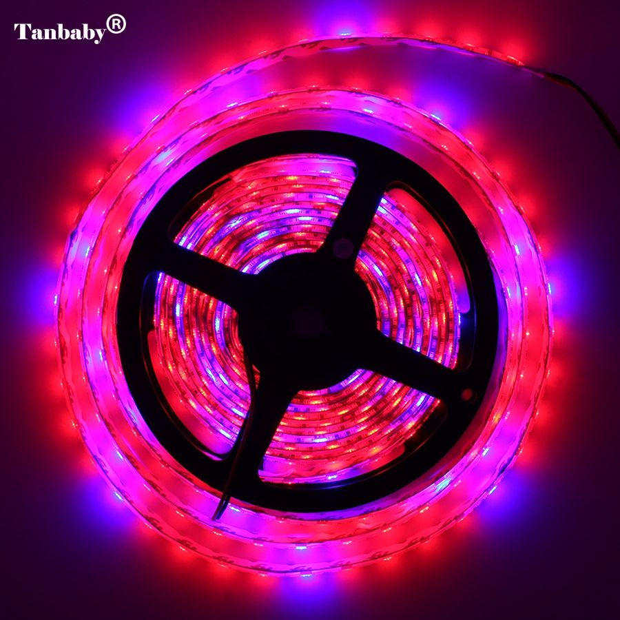 5M/lot LED Grow Lights <font><b>DC12V</b></font> Growing LED Strip Tape 5050 IP65 Plant Growth Light Lamp for Greenhouse Hydroponic plant
