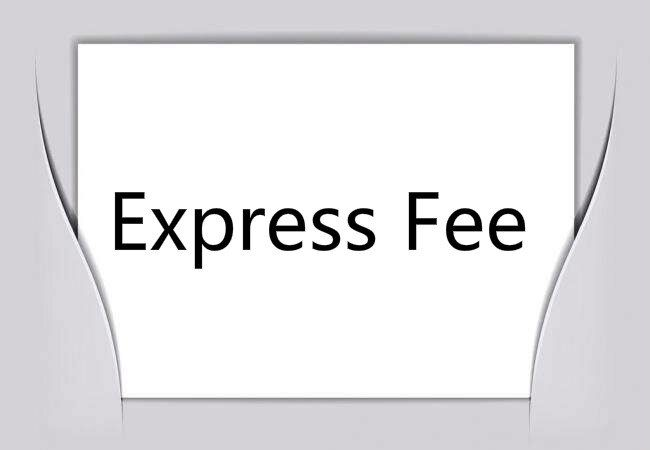The Express Fee For Dropshipper