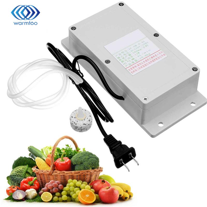 220 V 500 mg générateur d'ozone purificateur d'air domestique pour Air alimentaire fruits légumes eau poisson réservoir désinfecteur stérilisateur