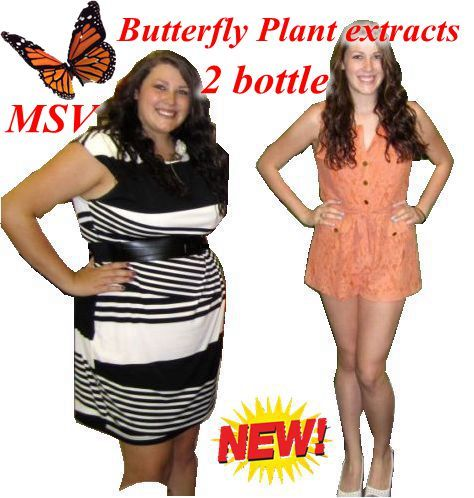 (2 bottles) 72 days supply diet product butterfly wild plant botanic extracts gels fat burner 100% effective advanced slimmming