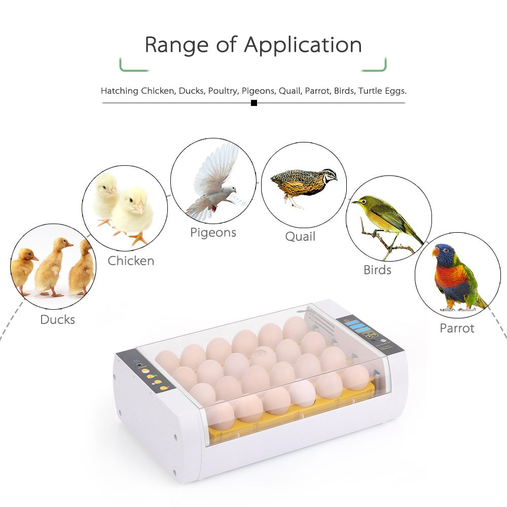 24 Egg Incubator 60W Automatic Egg Incubator Intelligent Control Hatcher Automatic Hatching for Chicken Duck Bird Quail 110-220V
