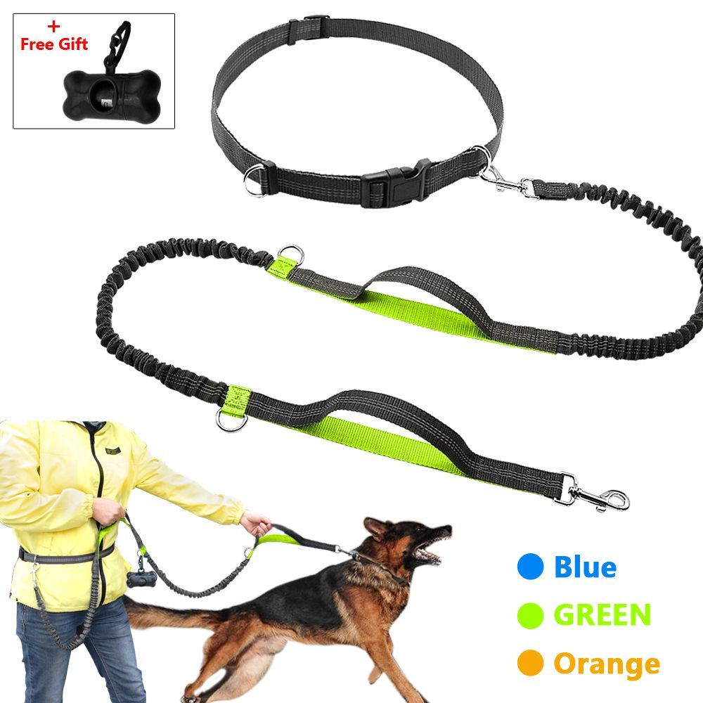 Retractable Hands Free Dog Leash for Running Dual Handle Bungee Leash Reflective For Up to 150 lbs Large Dogs Free <font><b>Bag</b></font> Dispenser