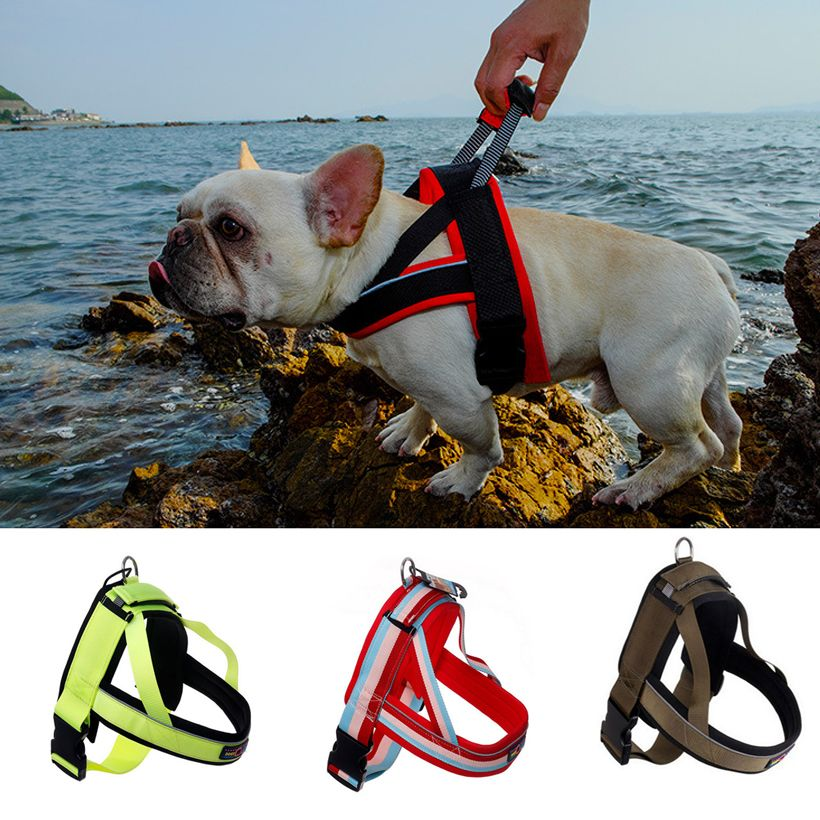 Medium Large Dog Harness Vest Pet Dog <font><b>Training</b></font> Vest Nylon Chest strap traction S M L XL size Four colors dog collar