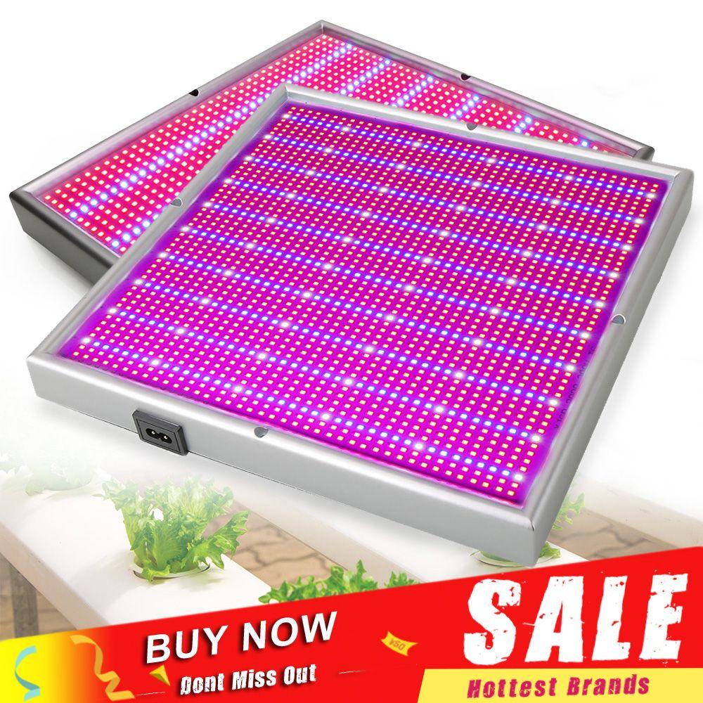 120W 200W Dimmable LED lampe de plante légère SMD3528 rouge bleu LED Fitolamp pour intérieur hydroponique fleur fruits Vegs serre