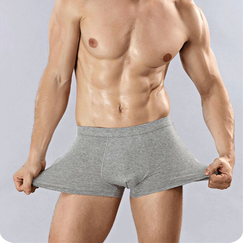 High Quality Cotton Men's Boxers Male Fashion Colorful Brand Men Underwear