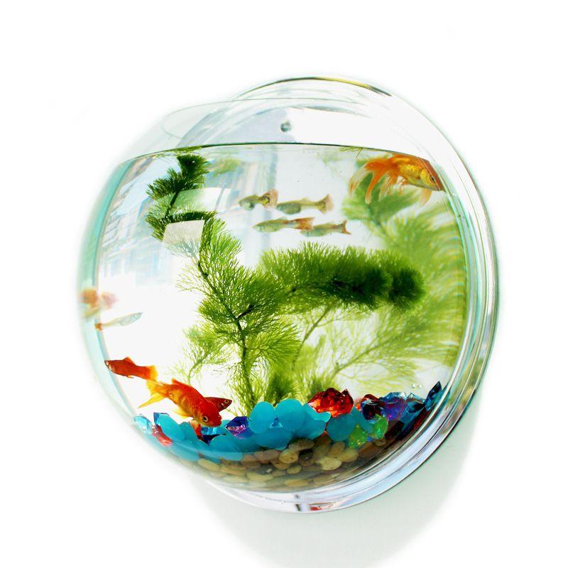 Pinsjar Acrylique Poissons Bol Mur Pendaison Aquarium Réservoir Aquatique Fournitures Pour Animaux Pet Produits Mur Fish Tank Mount pour Betta poissons