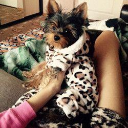 Moda suave cómodo ropa del perro Yorkshire Chihuahua ropa perro pequeño perrito perro abrigo ropa para mascotas