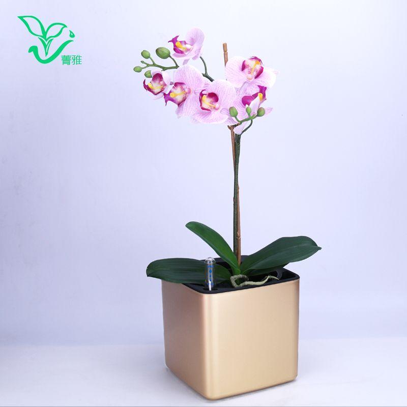 Six couleurs Margic carré paresseux auto-absorption d'eau créatif personnalisé peinture porcelaine en plastique pot de fleur pour jardin plante