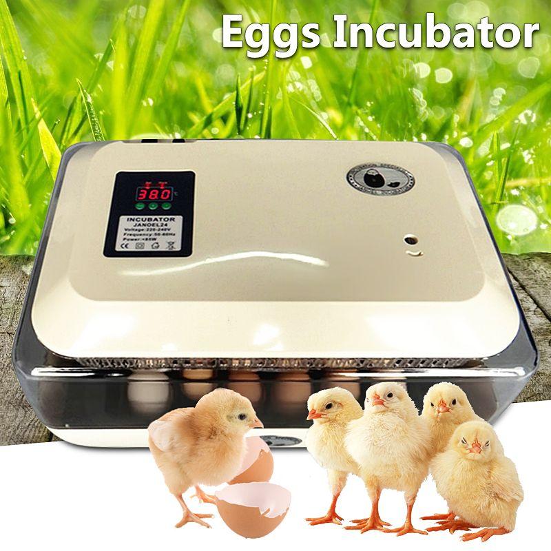 180V/240V 50-60HZ 85W Auto-Turning Digital 24 Eggs Incubator Automatic Hatch Chicken Duck Egg AU Plug 43x29x22.5cm Simple