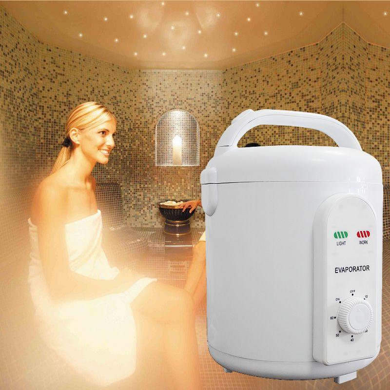 Sauna Steam Bath Machine Portable Sauna Steam Generator infrared sauna oxygen ionizer Free shipping 110v or 220v