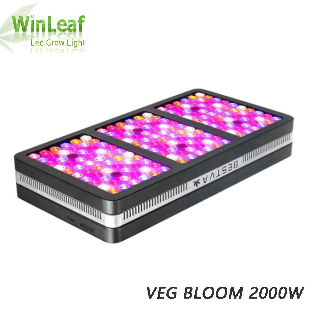 LED Gorw Volle Spektrum 600w 1200w 2000w Für Innen gewächshaus Hydrokultur Samen und samer Licht Wachsen led
