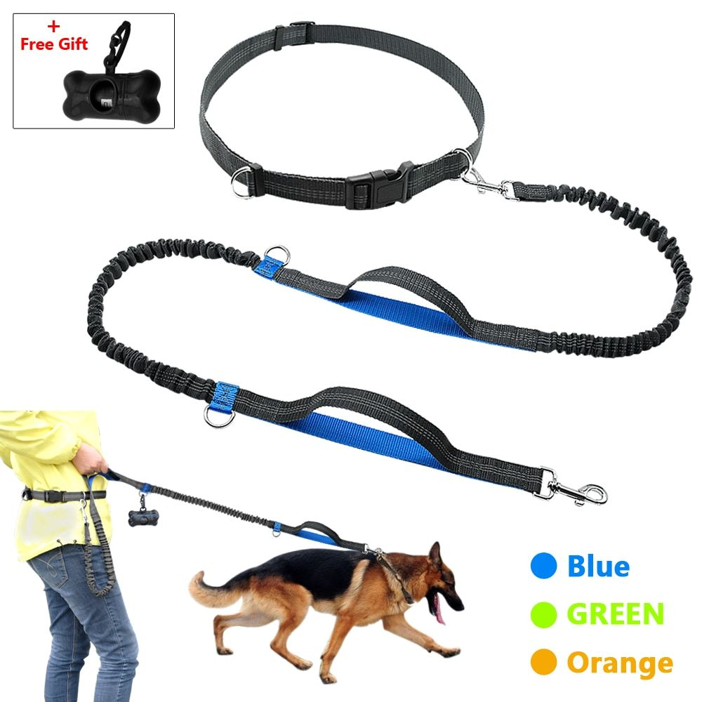 Hands Free Dog Leash Retractable Bungee Leash Lead Reflective For Running Walking Up to 150 lbs Large Dogs Free Bag Dispenser