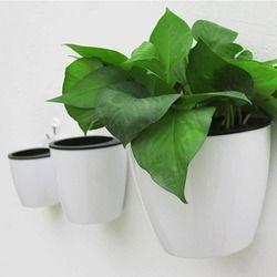 Modern Design Home Wall Hanging Design Flower Pot Round Shape Resin Hydroponics Chlorophytum Potted Flower Pots Minimalist style