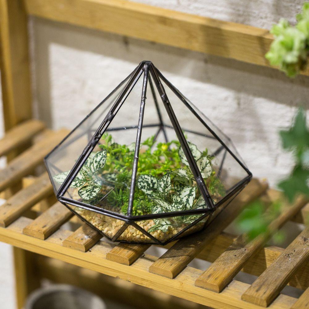 Table de jardin Diamant Verre Géométrique Terrarium Balcon Affichage Planteur pour Succulentes Plantes Décoratives Fleur Pot avec Couvercle