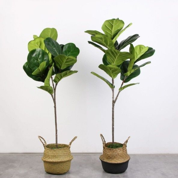 5PCS Real Touch Artificial Banyan tree Branch Artificial Banyan tree Plant Fake Banyan tree Bouquet For Home Garden Decoration