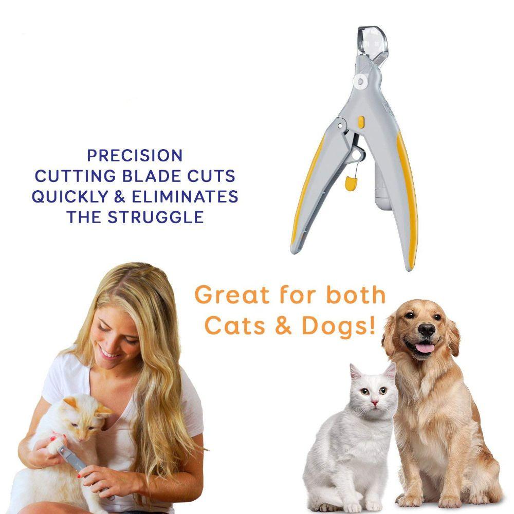 Tondeuse professionnelle pour chiens chien coupe-ongles pour animaux de compagnie chat griffe meuleuse avec lumière LED & 5X loupe sécurité coupe-ongles pour animaux de compagnie