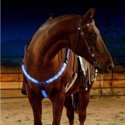 LED Horse Harness Breastplate Nylon Webbing Horse Riding Equestrian Safety Gear In Night Horse LED Breastplate Collar Lights