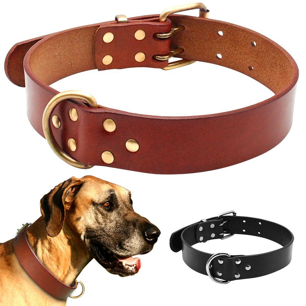 Meilleurs colliers de luxe en cuir véritable pour chien de compagnie pour Pit bull berger allemand Labrador avec Durable D anneau et boucle S/M/L/XL noir