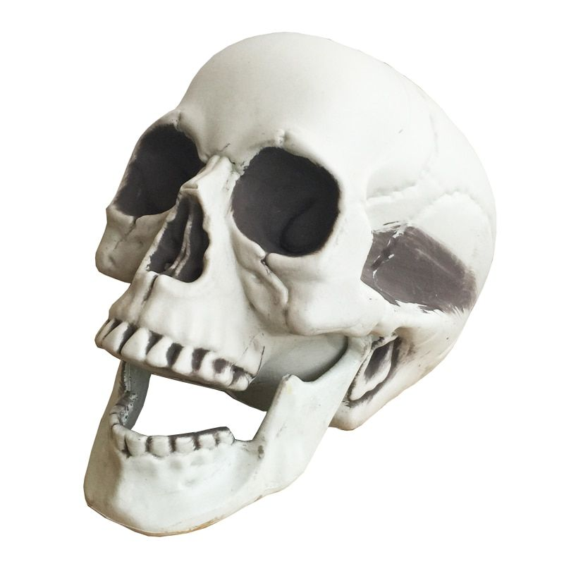 Halloween squelette crâne Halloween crâne os vie size160 Crâne Hanté Maison Évasion accessoires d'horreur Décorations