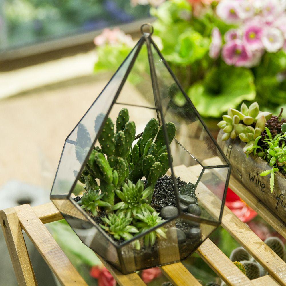 Moderne artistique suspendus verre clair cinq surfaces diamant Pots de fleurs succulente fougère mousse planteur géométrique Terrarium avec boucle
