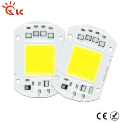 COB LED Lamp Chip 5W 10W 20W 30W 50W LED COB Bulb Lamp 220V Smart IC Driver Cold Warm White LED Spotlight Floodlight Chip