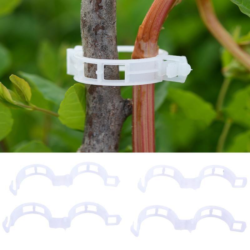 50/100/200 stücke Gartenpflanze Unterstützung Clips für Spalier Schnur Gewächshausanlage Tomaten Hängen Reben Gemüse Obst Befestigungsclip