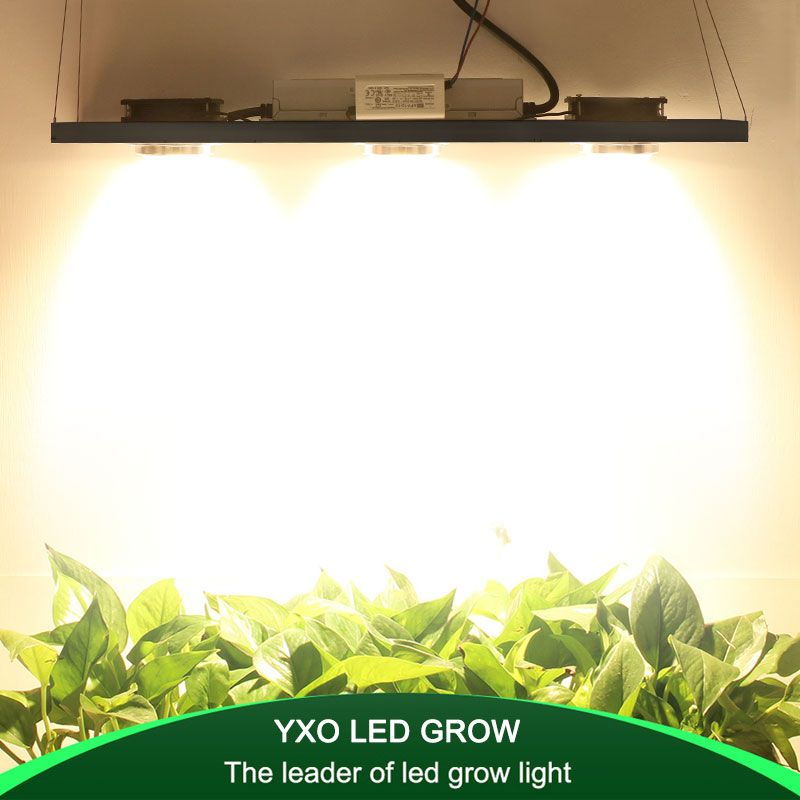 CREE CXB3590 300 W COB Dimmbare LED Wachsen Licht Voll Spektrum LED Lampe 38000LM = HPS 600 W Wachsen Lampe innen Pflanzen Wachstum Beleuchtung
