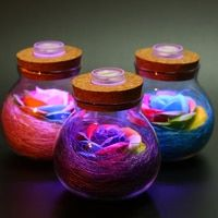 1Pcs Creative Valentine's Day Flash Wishing Never Dying Rose Light Bottle Colorful Soap Flower Remote Night Light Mom Lady Girls