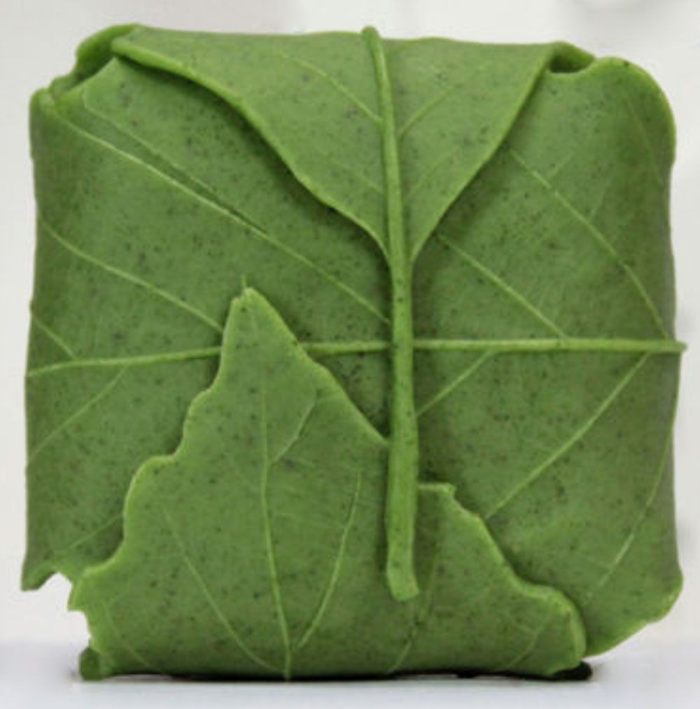 Natur platz blatt seifen-form silikon formen