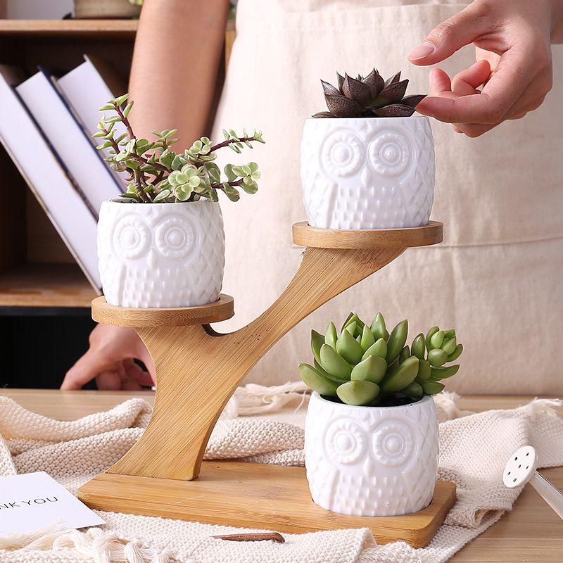 1 Set Ceramic Owl Garden Pots Modern Decorative Nursery Succulent Plant Pot 3 Bonsai Planters with 3-Tier Bamboo Shelf