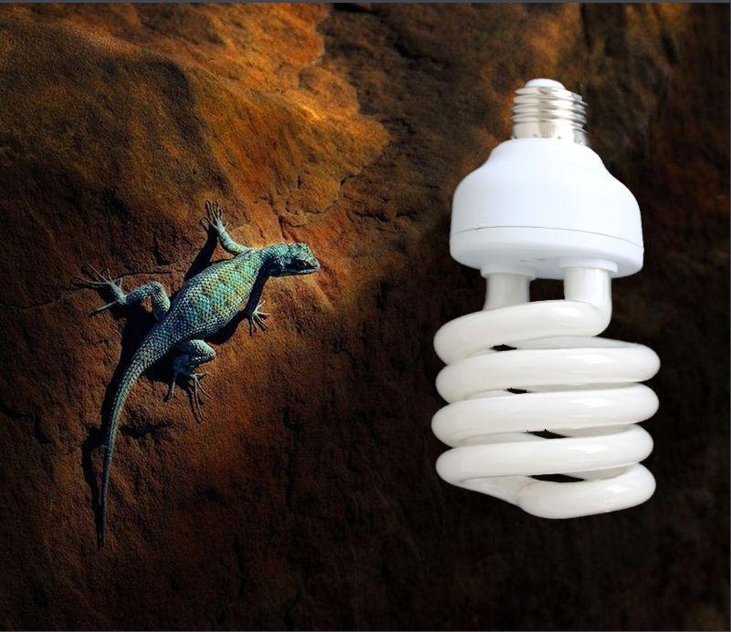 Reptile Compact Fluorescent Vivarium lampe lumière 110v 220v 10.0 UVB UVA UV 26W 10.0 E27 vis lumière P415