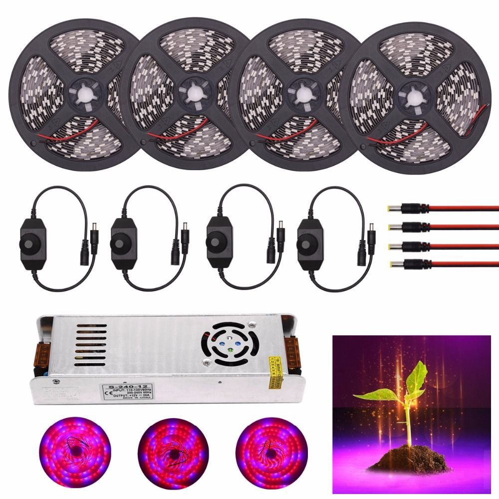 DC 12V LED Strip Waterproof 5050 LED Grow Lights 5M 10M 15M 20M 30M Plant LED Grow Lights Strip Flexible Tape 60led/m with Power