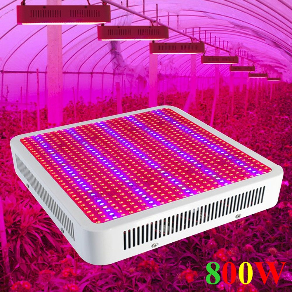 800W Full Spectrum LED Grow Light Hydroponics 800W LED Plant Lamp Best For Greenhouse Grow Tent Cheapest------Limited Time Offer