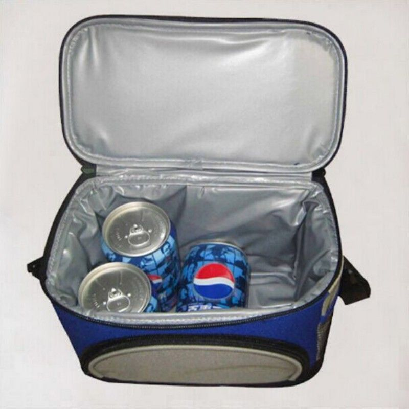 CBJ car Refrigerators colorful cooler box pvc material can keep drink cool and warm good quality