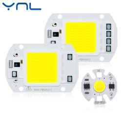 Real Power LED Tongkol Chip 20 W 30 W 50 W LED Lampu Bohlam 220 V 240 V Masukan IP65 smart IC untuk DIY Kolam LED Banjir Cahaya Chip