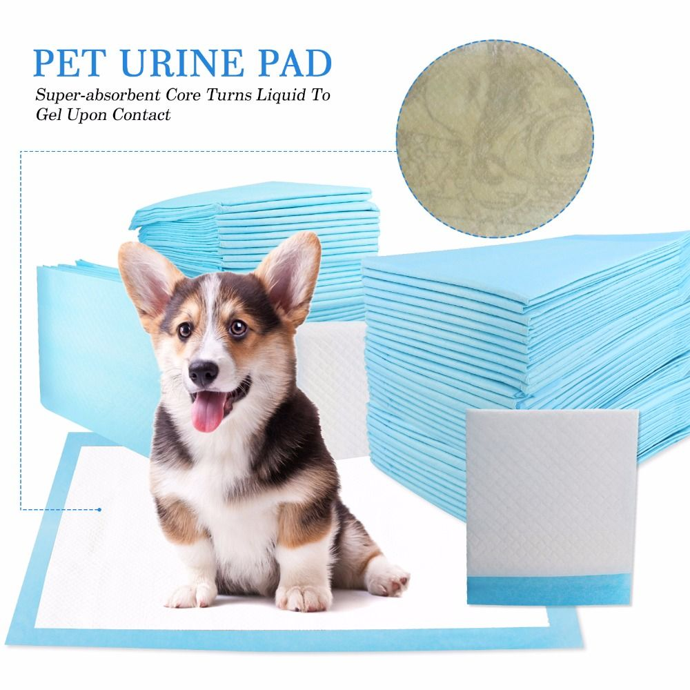 Multi-size Pet Diapers Antibacterial Pet Dog Nappy Super Absorbent Pet Dog Training Urine Pad Diapers Perfect for Dogs Cleaning